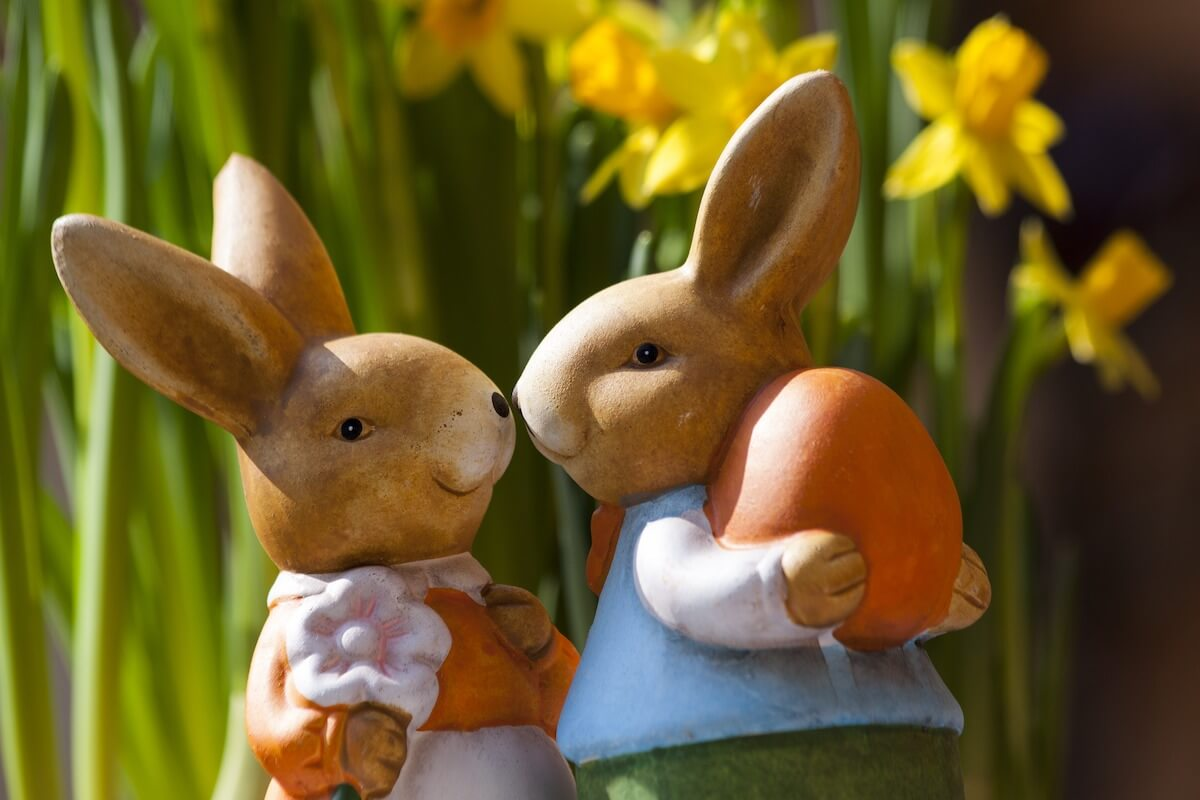 bookingkit-Ostern-Marketing-Tipps-Hase